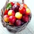 Peaches, Plums, & Nectarines