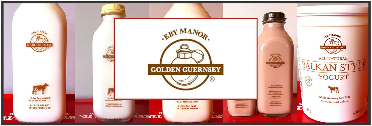 Eby Manor Golden Guernsey