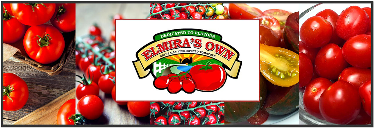 Elmira's Own Naturally Vine-Ripened Tomatoes