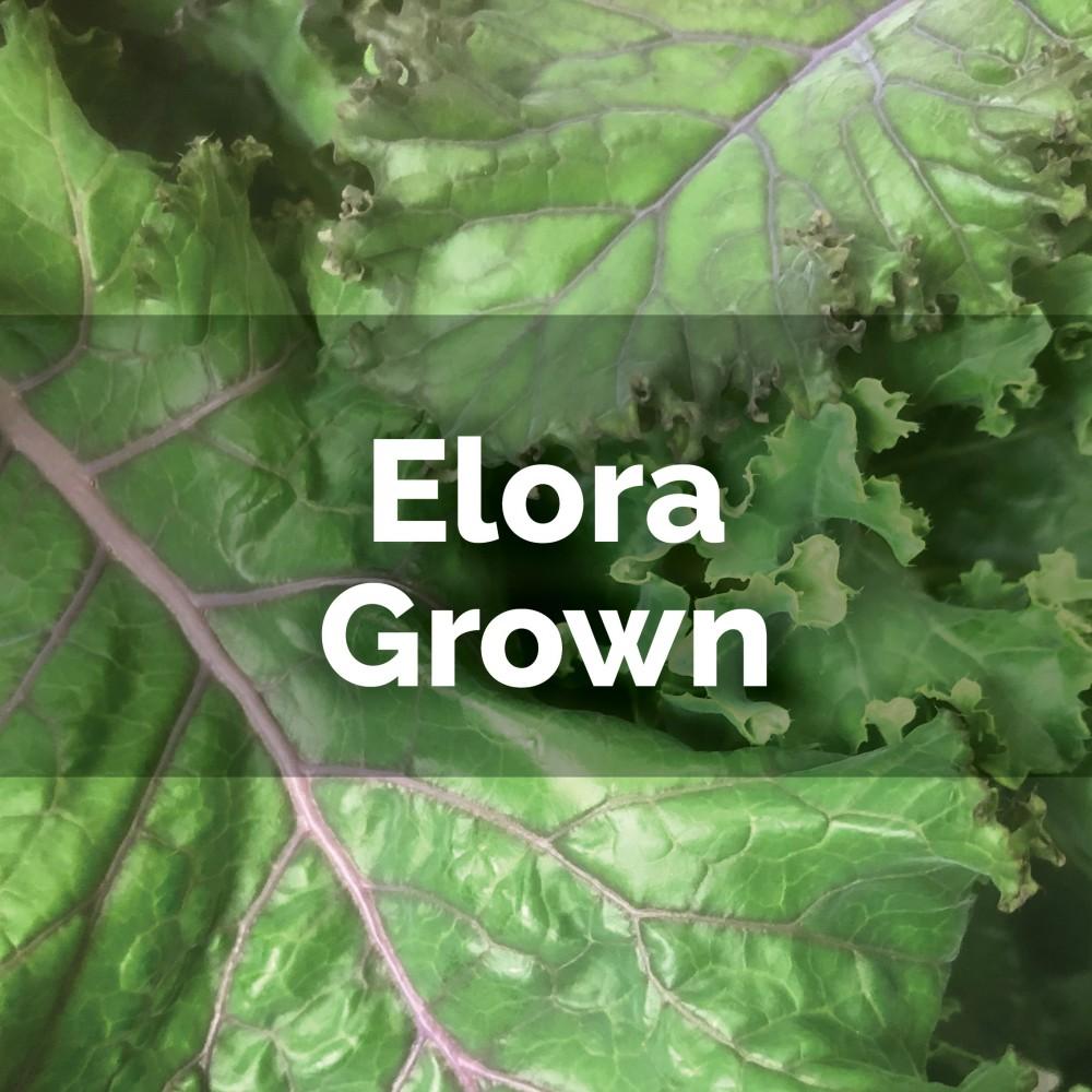 Baby Kale - loose leaves