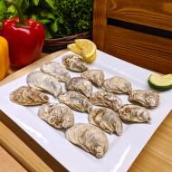 Oysters Avonlea
