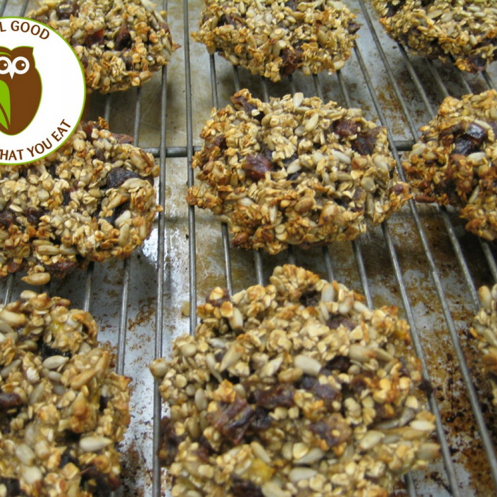 Healthy Owl Squirrel Cookies - Wheat-free/Dairy-free/Vegan - half dozen