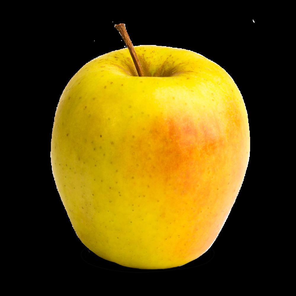 Ginger Gold Apples 5.5lb