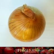 Onion - Spanish (1lb)