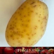 Potatoes - White (1lb)